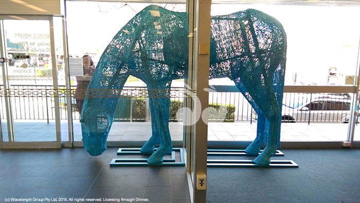 Big Blue will be on display in Scone throughout April and the Horse Festival