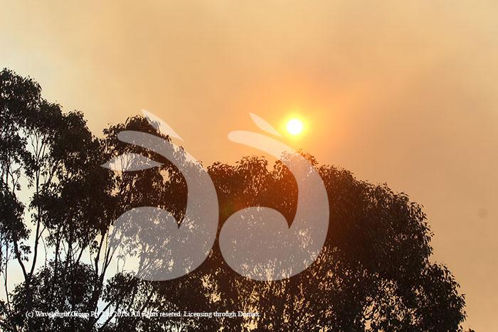 Bunnan grass fire, grass fire, rural fire service, fire