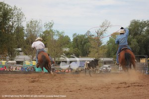 Junior Jackpot Rodeo @ White Park | Scone | New South Wales | Australia