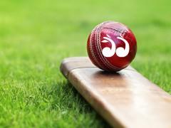 Upper Hunter Cricket: January 22