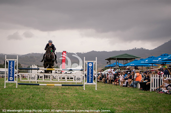 Former Olympian Heath Ryan competing in the twighlight jumping in Scone on the weekend.