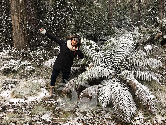 Debbie Startin doesn't miss a snow fall.