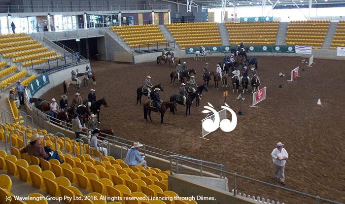 The Australian Stock Horse Nationals in Tamworth last year.