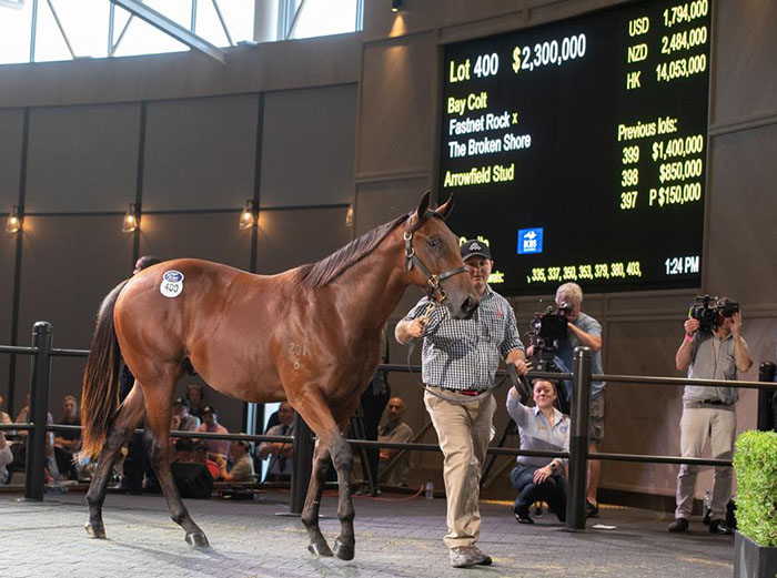 The highest selling yearling at the Inglis slaes this year was a colt by Fastnet Rock and The Broken Store which sold for $2.3 million.