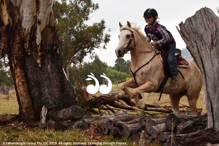 Paige Baxter competing on her pony Nova in the cross country event obstacle.