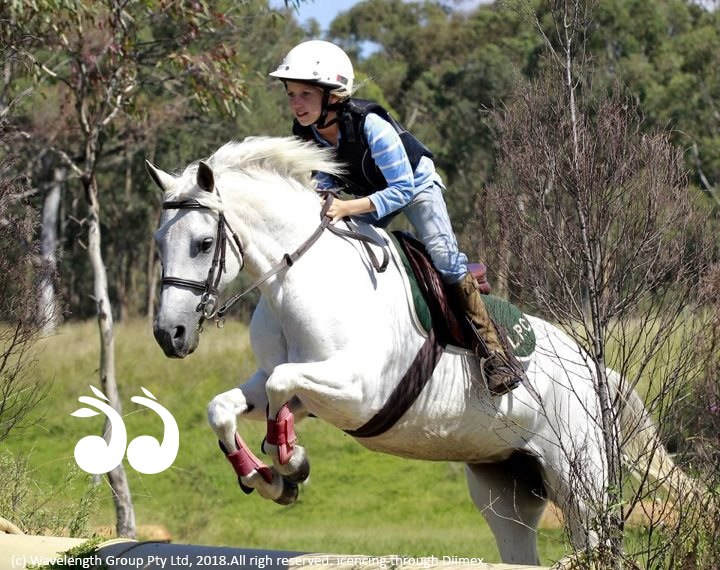 Millie Fisher was awarded Young Achiever for the 2018 Scone Horse Festival.