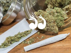 Drug Use Trends in the Upper Hunter